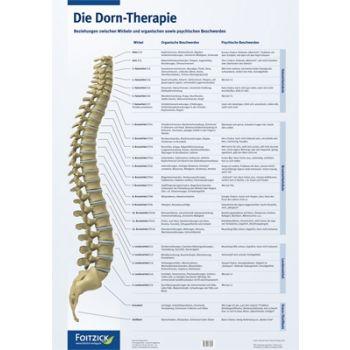 Die Dorn-Therapie - Poster